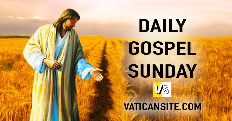 gospel response to matthew 13 24 30